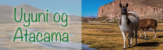 Uyuni og Atacama