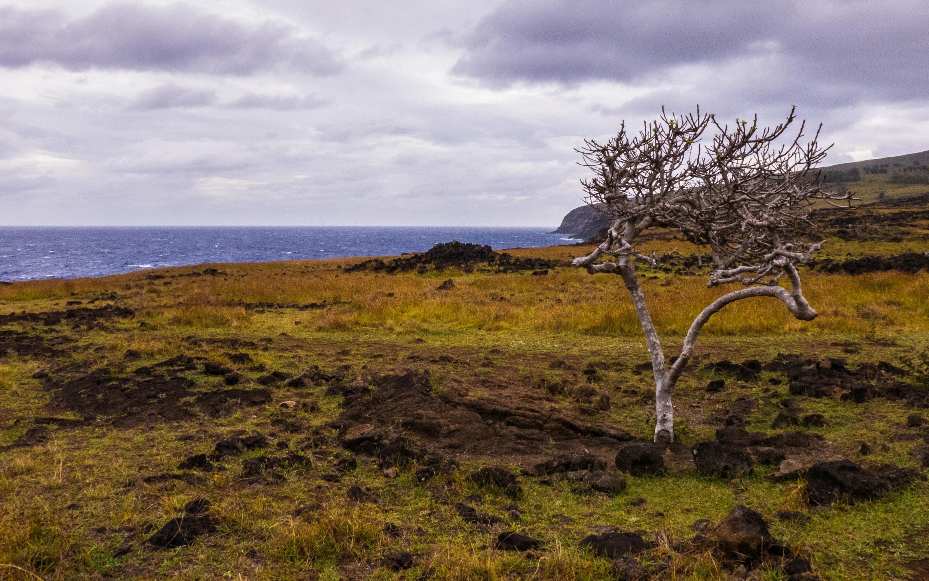 Påskeøya