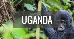 Reiseguide Uganda