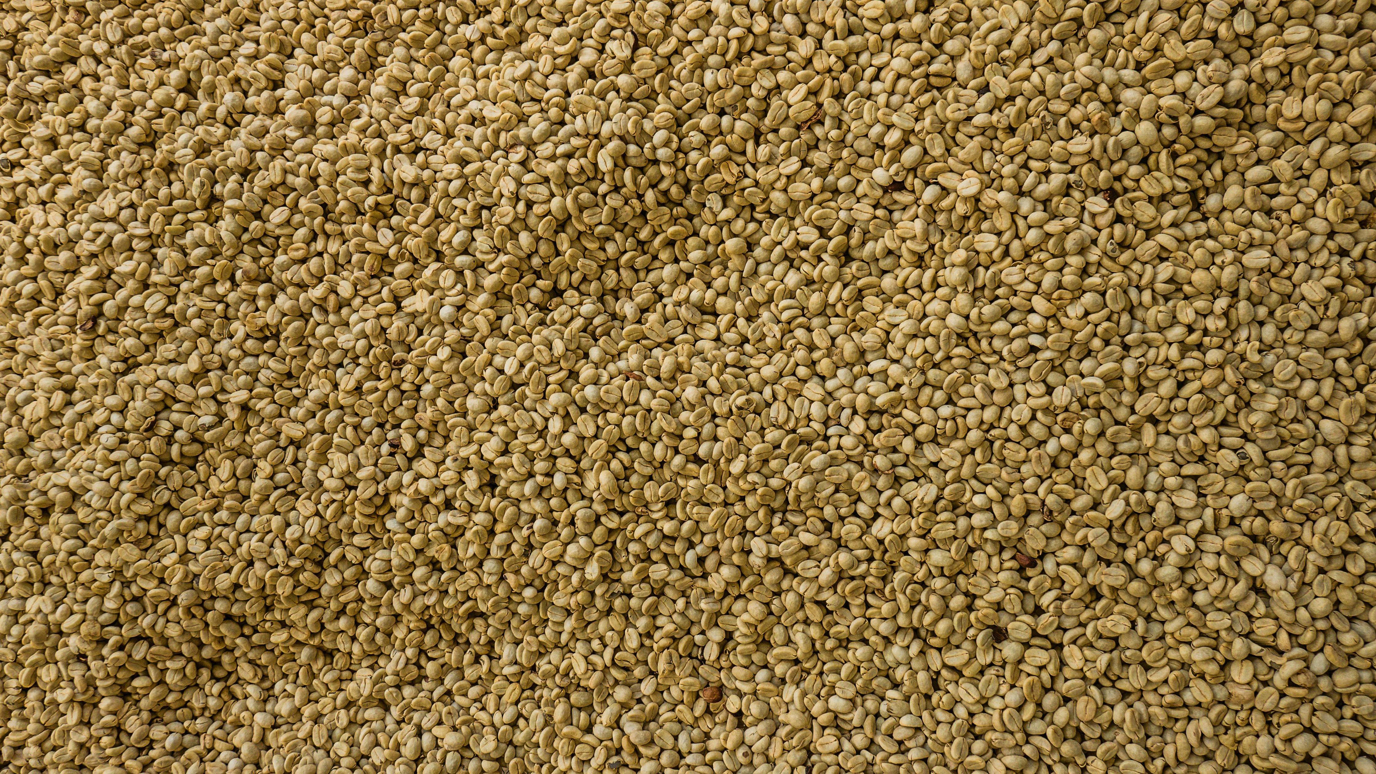 Salento kaffebønner
