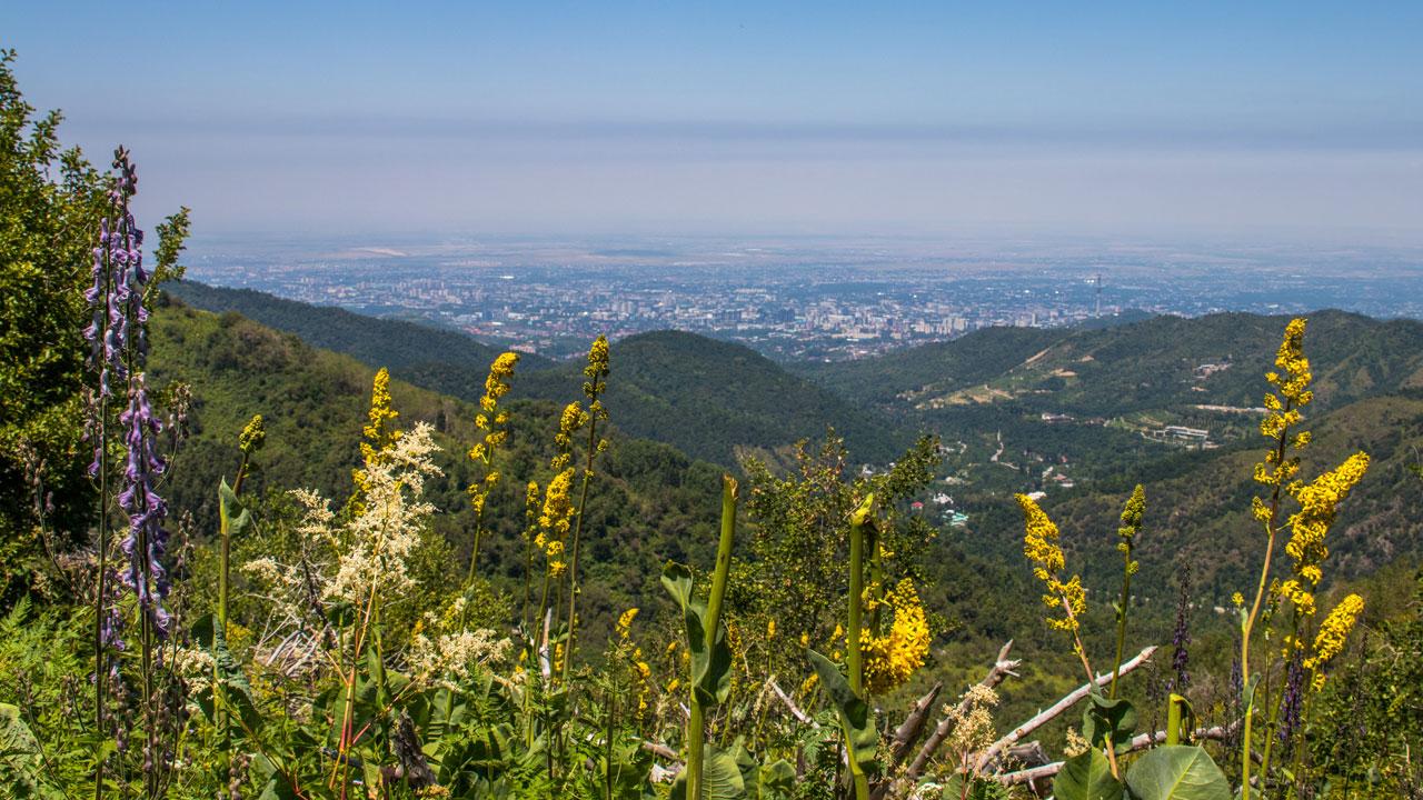 Utsikt over Almaty fra Kok Zhailau