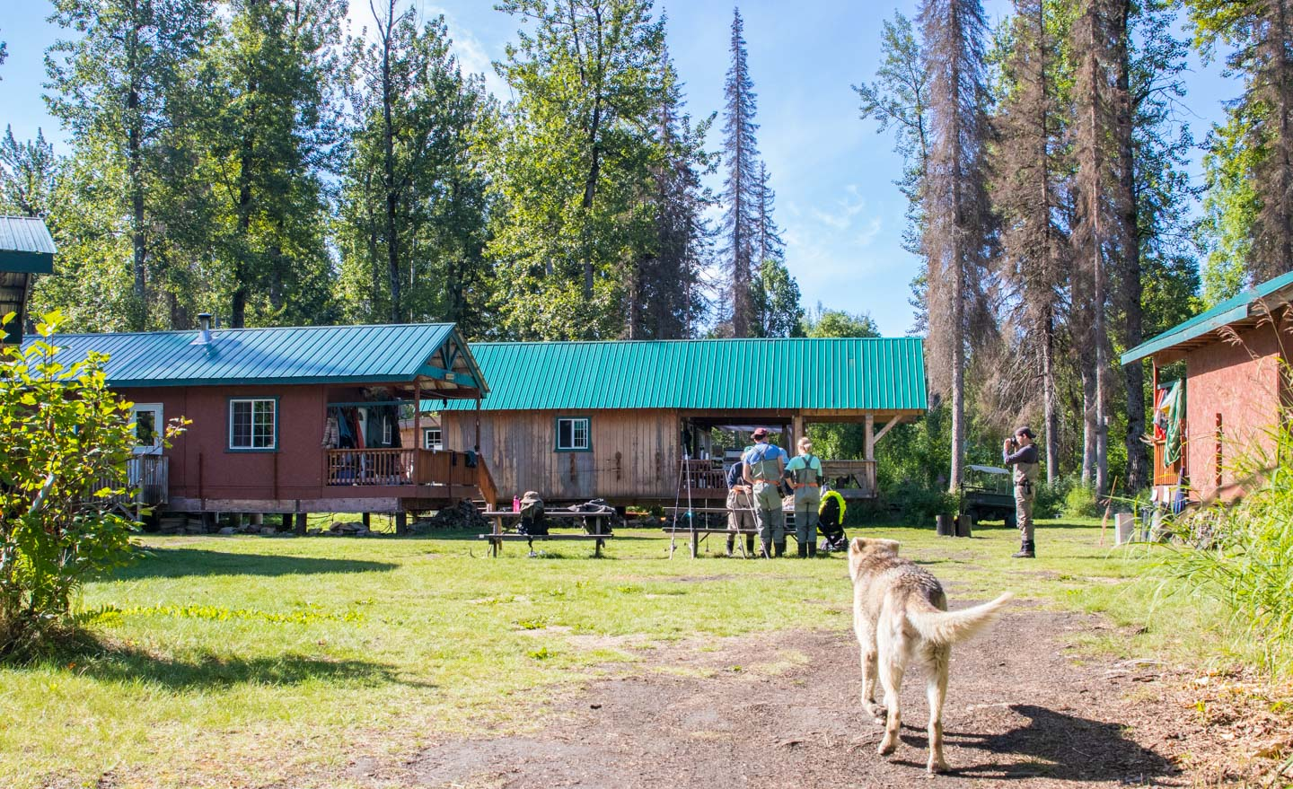 Talkeetna Fishing Lodge Alaska