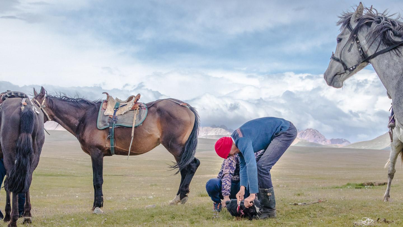 Kokboru, Kirgisistan